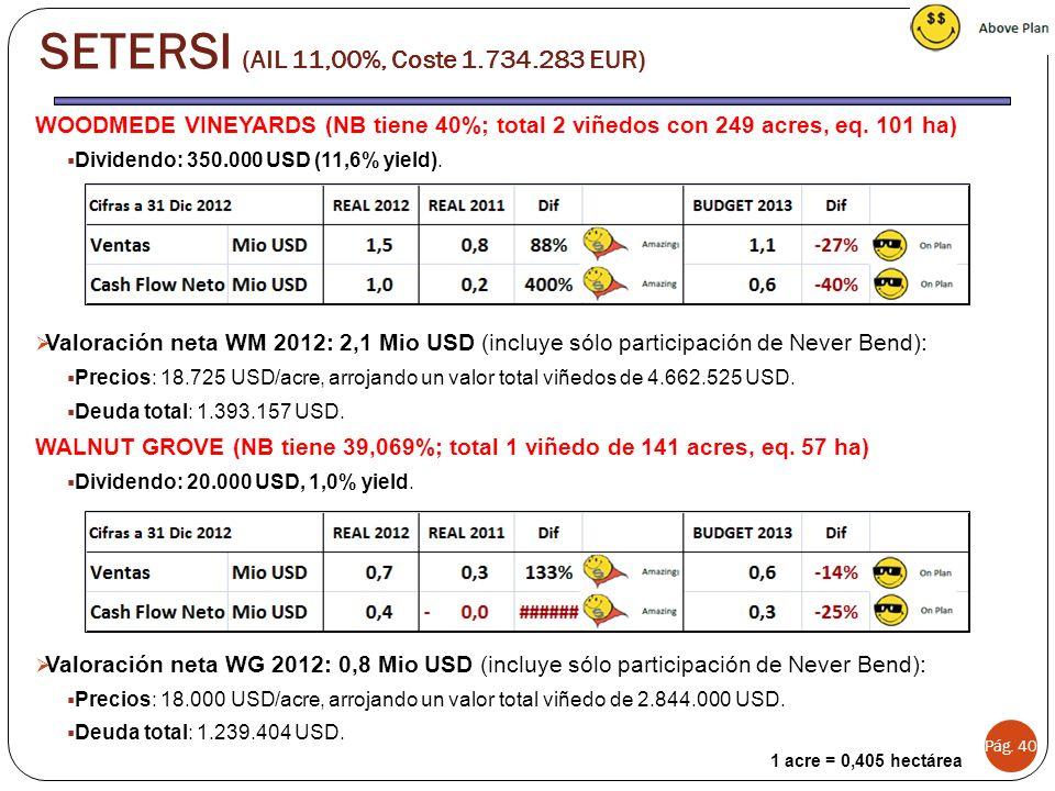Pág. 40 SETERSI (AIL 11,00%, Coste 1.734.283 EUR) 1 acre = 0,405 hectárea WOODMEDE VINEYARDS (NB tiene 40%; total 2 viñedos con 249 acres, eq. 101 ha)