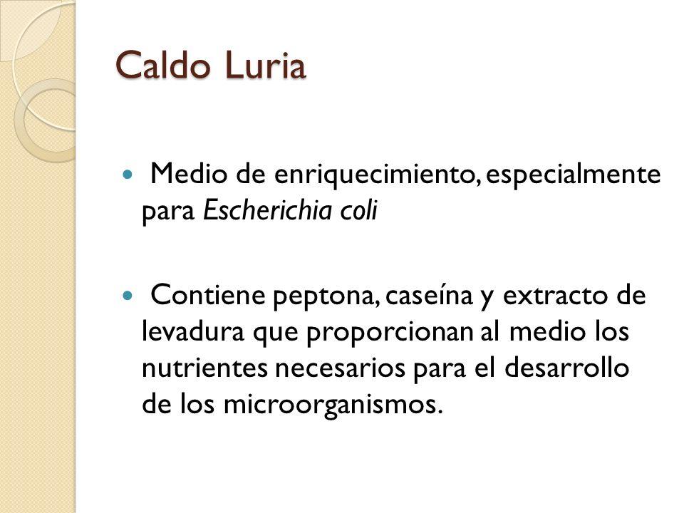 Caldo Luria Medio de enriquecimiento, especialmente para Escherichia coli Contiene peptona, caseína y extracto de levadura que proporcionan al medio los nutrientes necesarios para el desarrollo de los microorganismos.