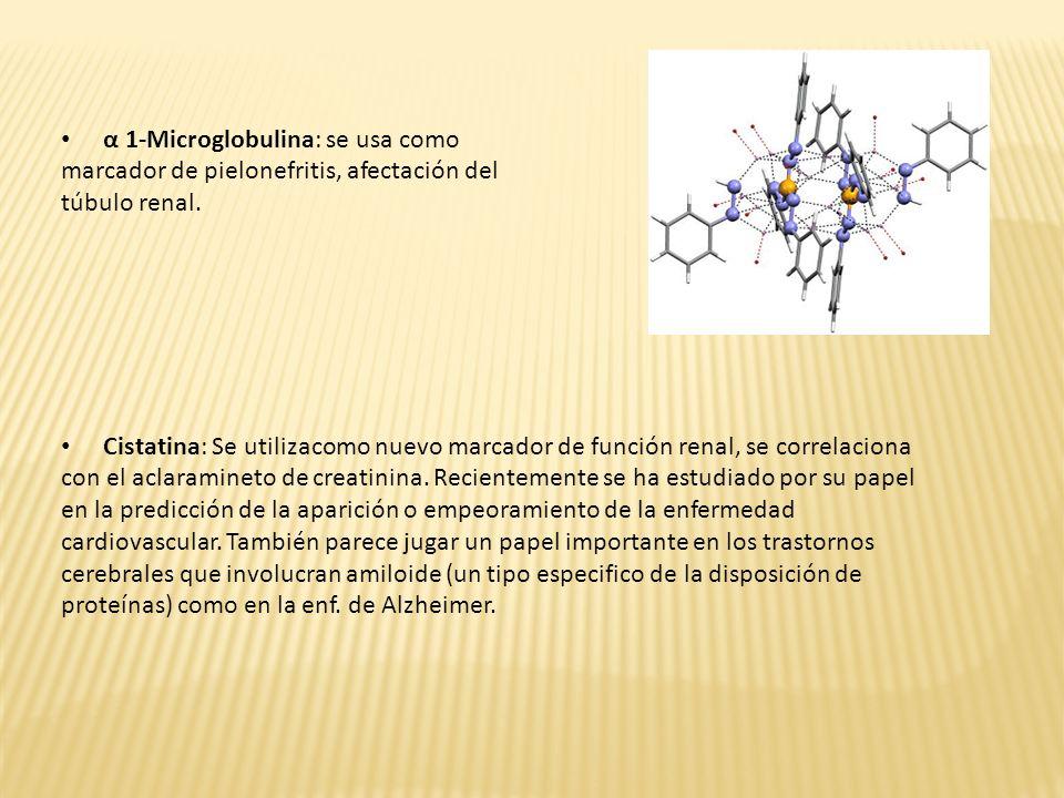 α 1-Microglobulina: se usa como marcador de pielonefritis, afectación del túbulo renal. Cistatina: Se utilizacomo nuevo marcador de función renal, se