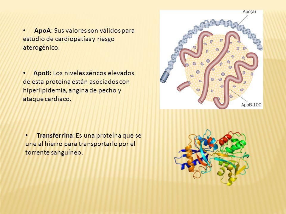 CDT ó Transferrina carbohidrato deficiente: Se asocia como marcador en el abuso alcohólico.