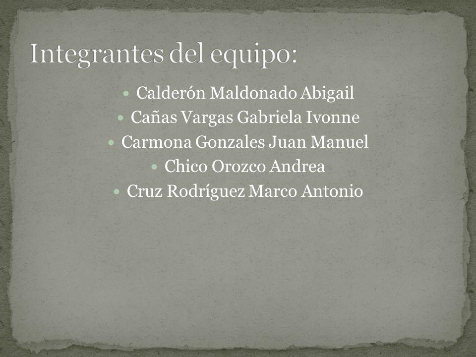 Calderón Maldonado Abigail Cañas Vargas Gabriela Ivonne Carmona Gonzales Juan Manuel Chico Orozco Andrea Cruz Rodríguez Marco Antonio