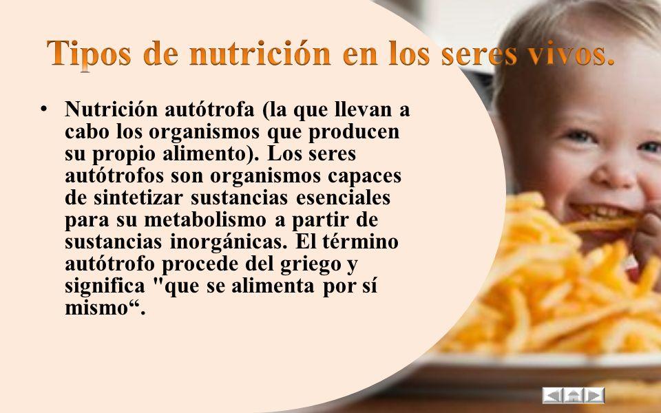 Muchos alimentos contienen carbohidratos y cuando hay un exceso de carbohidratos nuestro organismo se encarga de guardar esa energía sobrante en forma
