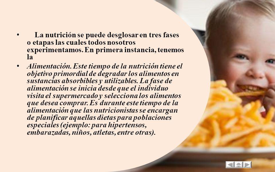 La nutrición como un conjunto de procesos se dirige hacia el estudio de la ingestión, digestión, absorción, metabolismo y excreción de las sustancias