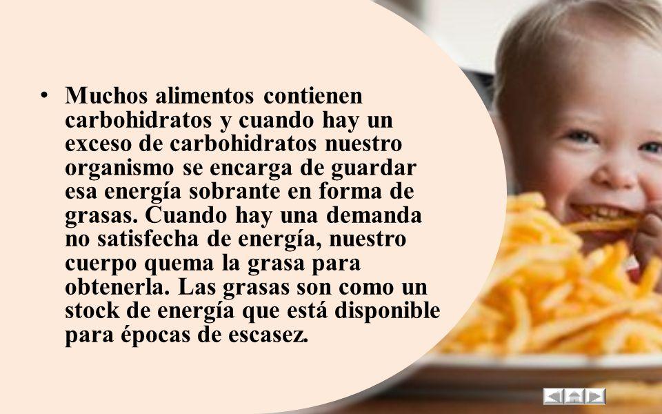 A través del tiempo la ciencia se ha encargado de demostrar la importancia de la nutrición para el buen funcionamiento del cuerpo humano. La gran vari