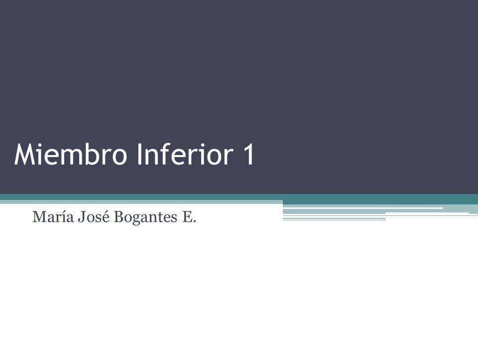 Miembro Inferior 1 María José Bogantes E.
