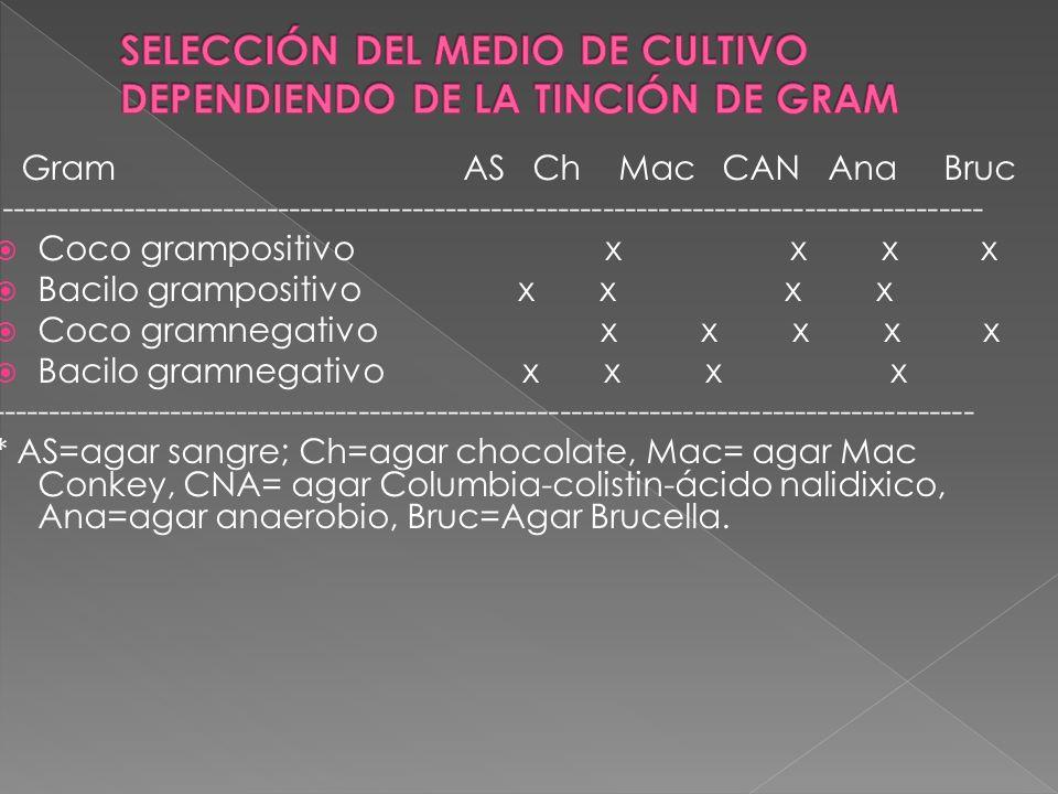 Gram AS Ch Mac CAN Ana Bruc ---------------------------------------------------------------------------------------- Coco grampositivo x x x x Bacilo