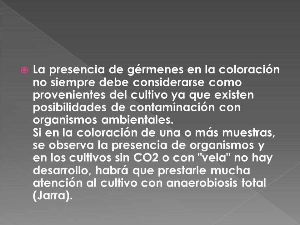 La presencia de gérmenes en la coloración no siempre debe considerarse como provenientes del cultivo ya que existen posibilidades de contaminación con