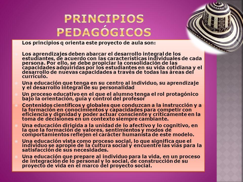 Los principios q orienta este proyecto de aula son: Los aprendizajes deben abarcar el desarrollo integral de los estudiantes, de acuerdo con las características individuales de cada persona.