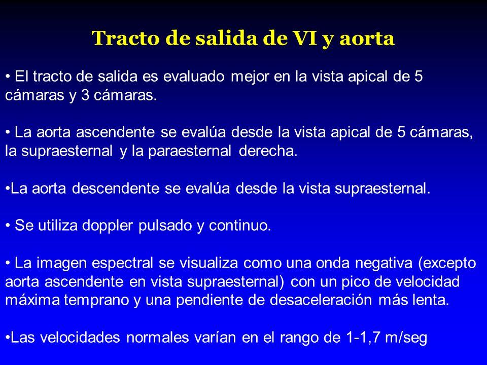 Tracto de salida de VI y aorta El tracto de salida es evaluado mejor en la vista apical de 5 cámaras y 3 cámaras. La aorta ascendente se evalúa desde