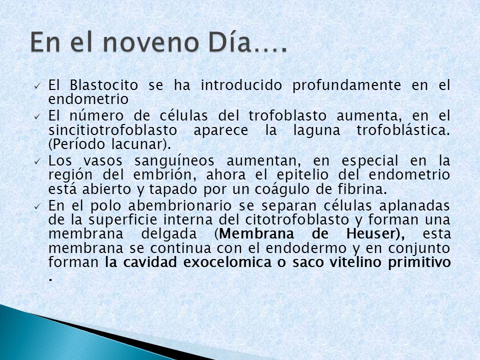 El Blastocito se ha introducido profundamente en el endometrio El número de células del trofoblasto aumenta, en el sincitiotrofoblasto aparece la lagu