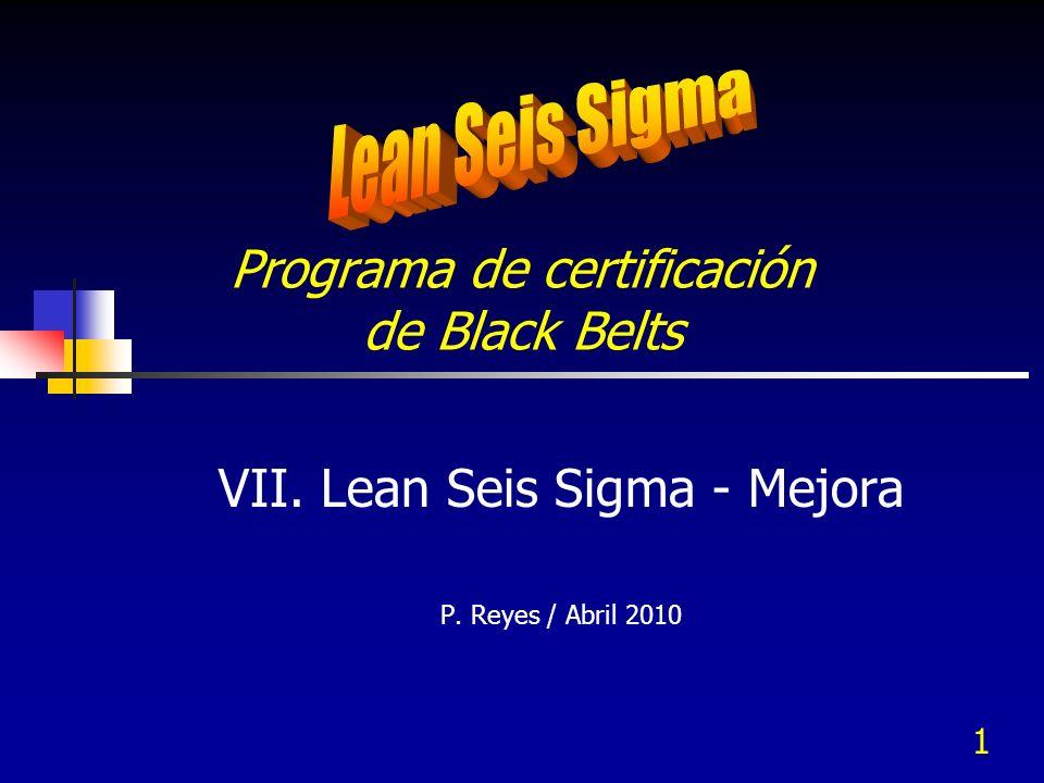 1 Programa de certificación de Black Belts VII. Lean Seis Sigma - Mejora P. Reyes / Abril 2010