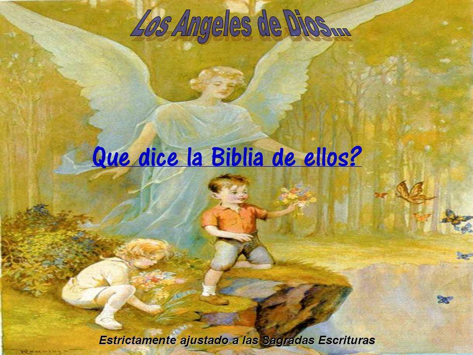 Estrictamente ajustado a las Sagradas Escrituras