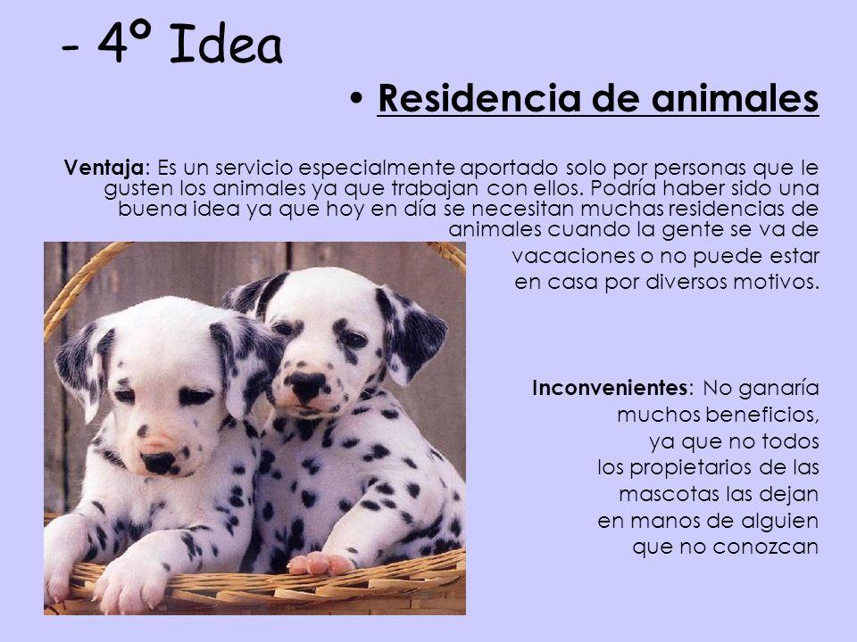 - 4º Idea Residencia de animales Ventaja : Es un servicio especialmente aportado solo por personas que le gusten los animales ya que trabajan con ellos.
