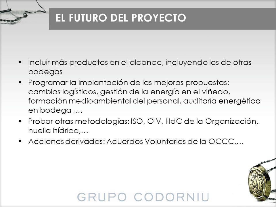 EL FUTURO DEL PROYECTO Incluir más productos en el alcance, incluyendo los de otras bodegas Programar la implantación de las mejoras propuestas: cambi