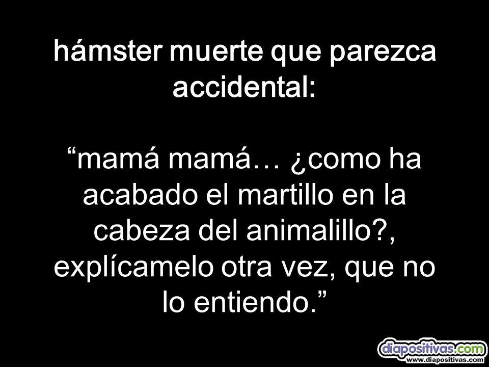 hámster muerte que parezca accidental: mamá mamá… ¿como ha acabado el martillo en la cabeza del animalillo?, explícamelo otra vez, que no lo entiendo.