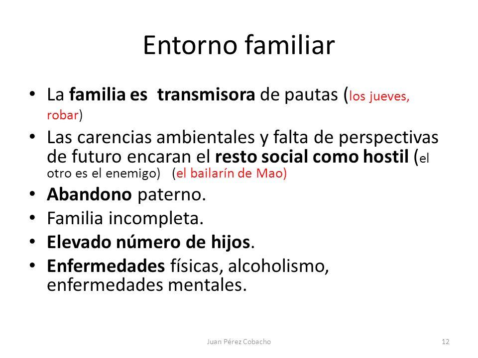Entorno familiar La familia es transmisora de pautas ( los jueves, robar) Las carencias ambientales y falta de perspectivas de futuro encaran el resto