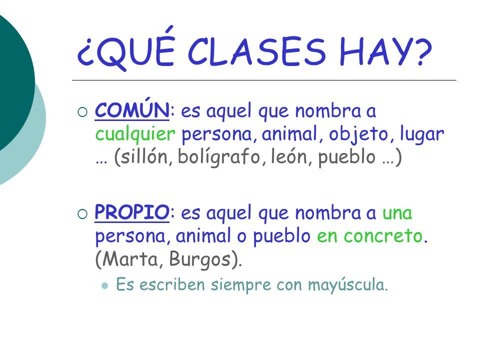 ¿QUÉ CLASES HAY.