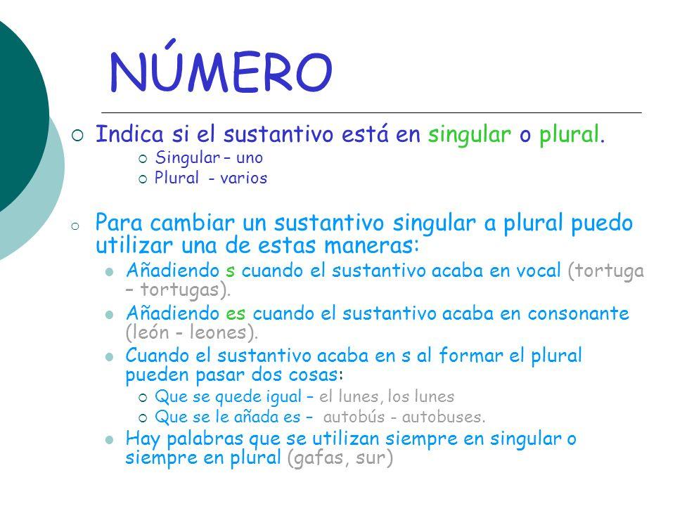NÚMERO Indica si el sustantivo está en singular o plural.
