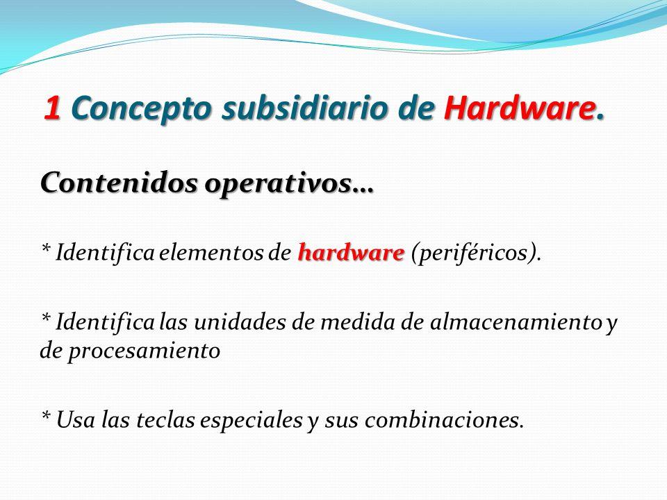 1 Concepto subsidiario de Hardware.