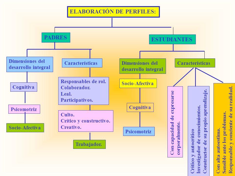 ELABORACIÓN DE PERFILES: Dimensiones del desarrollo integral Características Socio-Afectiva Responsables de rol. Colaborador. Leal. Participativos. Co