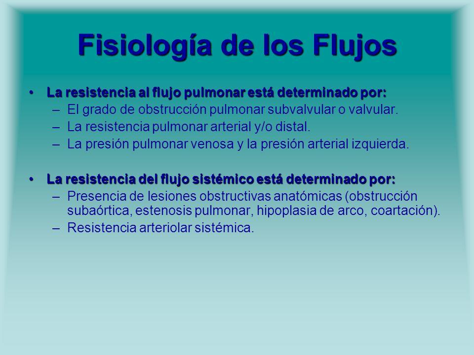 Fisiología de los Flujos La resistencia al flujo pulmonar está determinado por:La resistencia al flujo pulmonar está determinado por: –El grado de obs