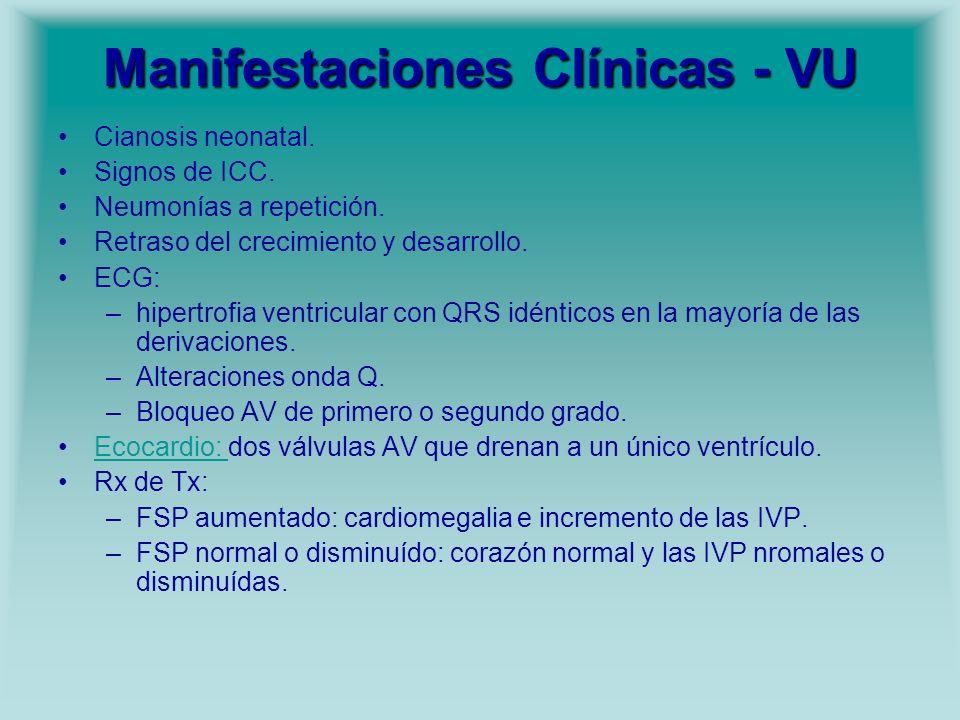 Manifestaciones Clínicas - VU Cianosis neonatal. Signos de ICC. Neumonías a repetición. Retraso del crecimiento y desarrollo. ECG: –hipertrofia ventri