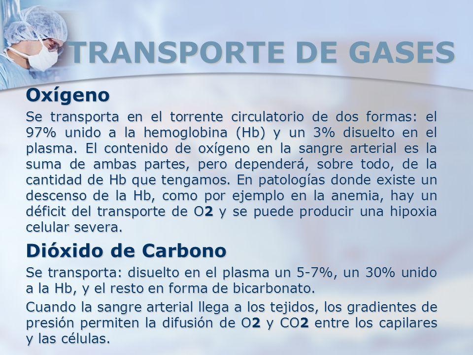 TRANSPORTE DE GASES Oxígeno Se transporta en el torrente circulatorio de dos formas: el 97% unido a la hemoglobina (Hb) y un 3% disuelto en el plasma.