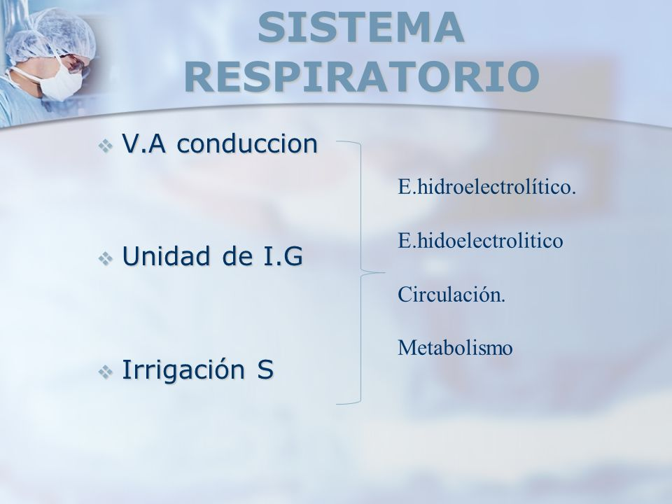 SISTEMA RESPIRATORIO V.A conduccion V.A conduccion Unidad de I.G Unidad de I.G Irrigación S Irrigación S E.hidroelectrolítico. E.hidoelectrolitico Cir