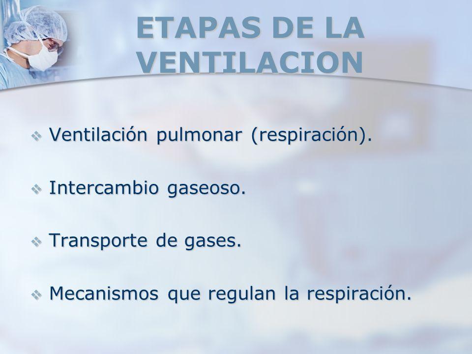 ETAPAS DE LA VENTILACION Ventilación pulmonar (respiración). Ventilación pulmonar (respiración). Intercambio gaseoso. Intercambio gaseoso. Transporte
