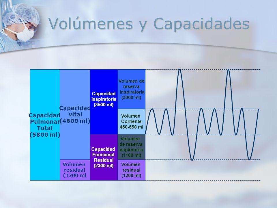 Volúmenes y Capacidades Capacidad Pulmonar Total (5800 ml) Capacidad vital (4600 ml) Volumen residual (1200 ml Capacidad Inspiratoria (3500 ml) Capaci