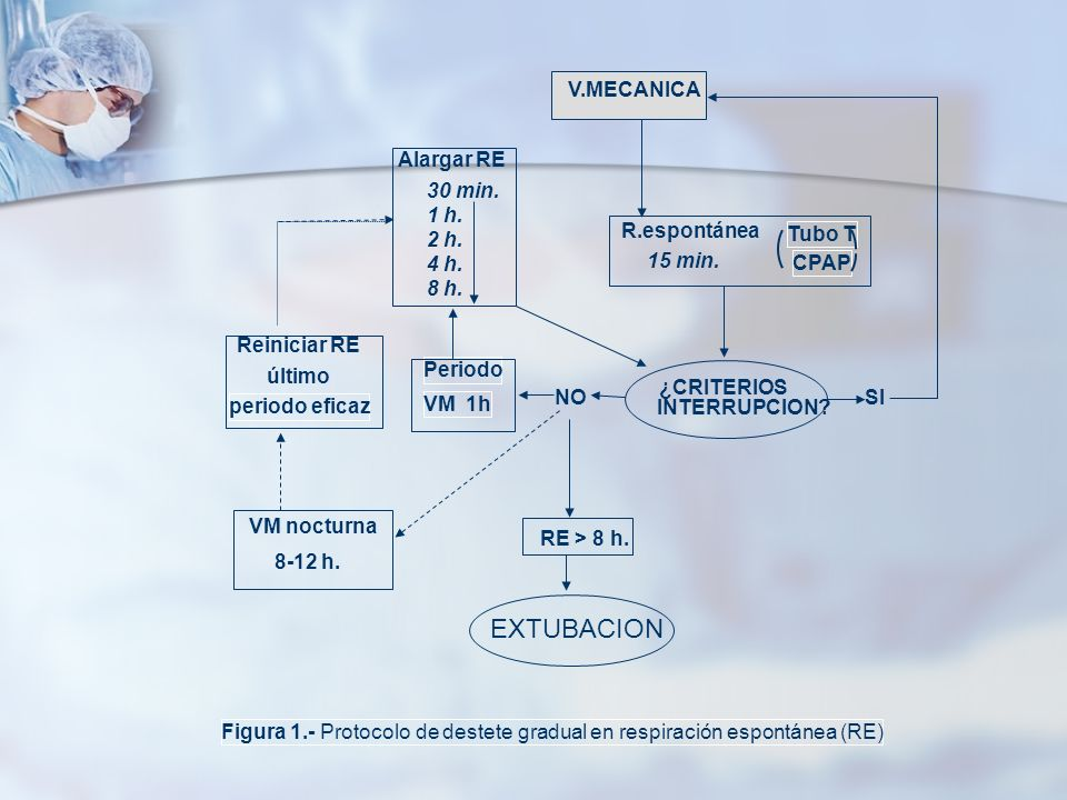 V.MECANICA R.espontánea Tubo T CPAP 15 min. ¿CRITERIOS INTERRUPCION? Alargar RE SINO Periodo VM 1h 30 min. 1 h. 2 h. 4 h. 8 h. VM nocturna 8-12 h. RE