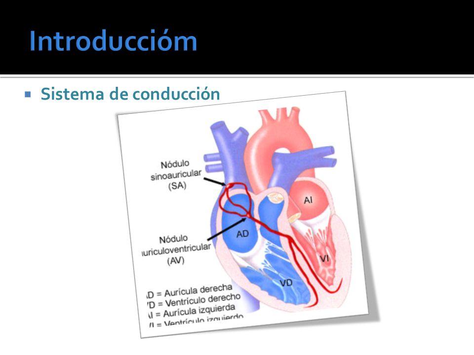 Dispositivo eléctrico capaz de suministrar impulsos intermitentes a una frecuencia determinada, con un potencial suficiente para producir la despolarización artificial de las células cardíacas y la posterior contracción ventricular
