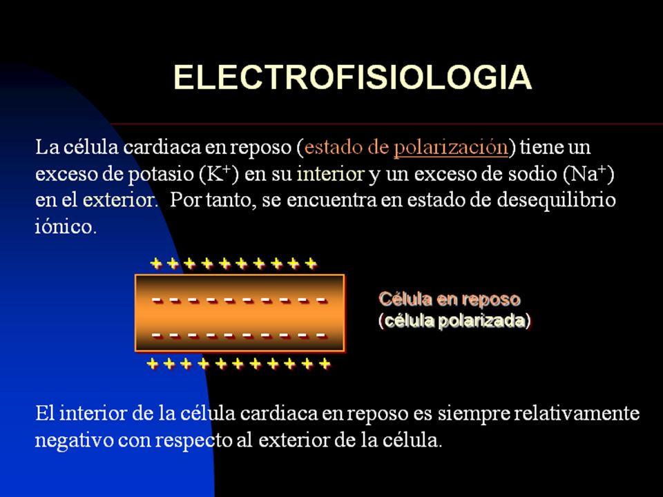 56 ELECTROCARDIOGRAMA NORMAL Onda T.- Debe ser, al menos, el 10% de un QRS; siempre que el QRS sea predominantemente positivo sin haber casi onda S.