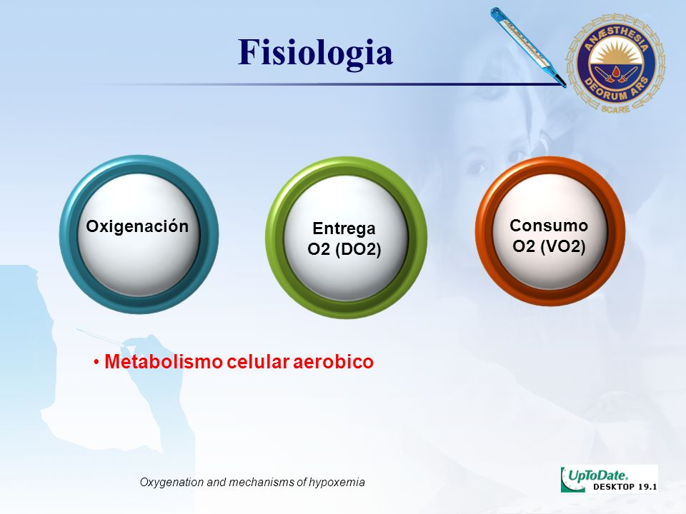 LOGO Fisiologia Oxigenación Entrega O2 (DO2) Consumo O2 (VO2) Metabolismo celular aerobico Oxygenation and mechanisms of hypoxemia