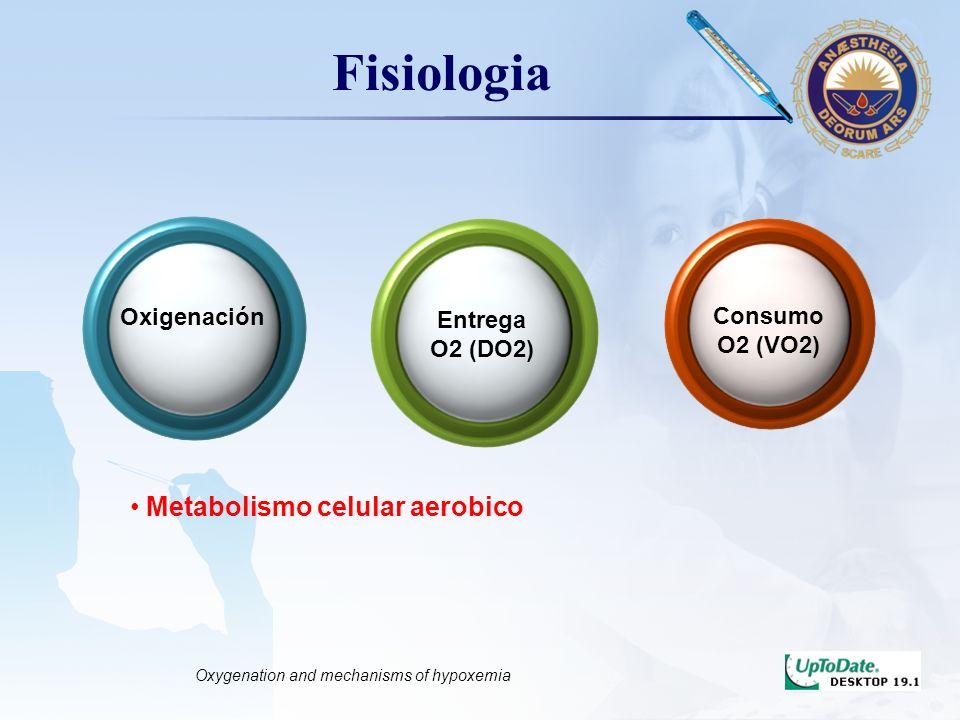 LOGO Disminucion de la entrega de oxigeno de la atmosfera a la sangre arterial (oxigenación insuficiente) Definicion Hipoxemia Disminucion de la entrega de oxigeno de la sangre arterial a los tejidos Hipoxia Monitoring Respiratory Function