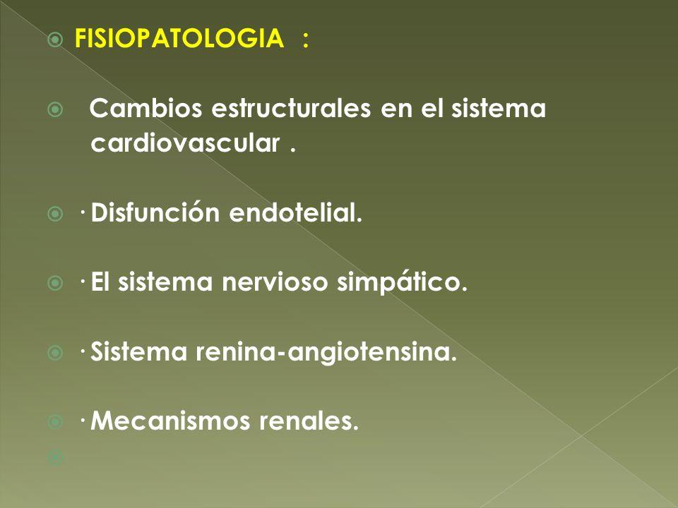FISIOPATOLOGIA : Cambios estructurales en el sistema cardiovascular. · Disfunción endotelial. · El sistema nervioso simpático. · Sistema renina-angiot