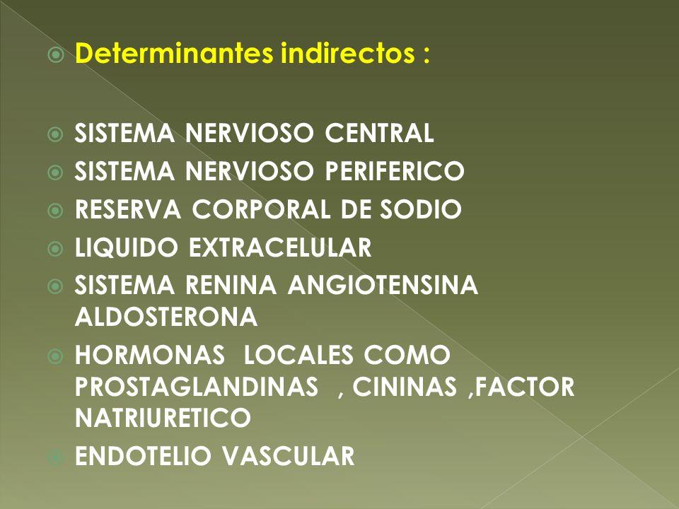 Determinantes indirectos : SISTEMA NERVIOSO CENTRAL SISTEMA NERVIOSO PERIFERICO RESERVA CORPORAL DE SODIO LIQUIDO EXTRACELULAR SISTEMA RENINA ANGIOTEN