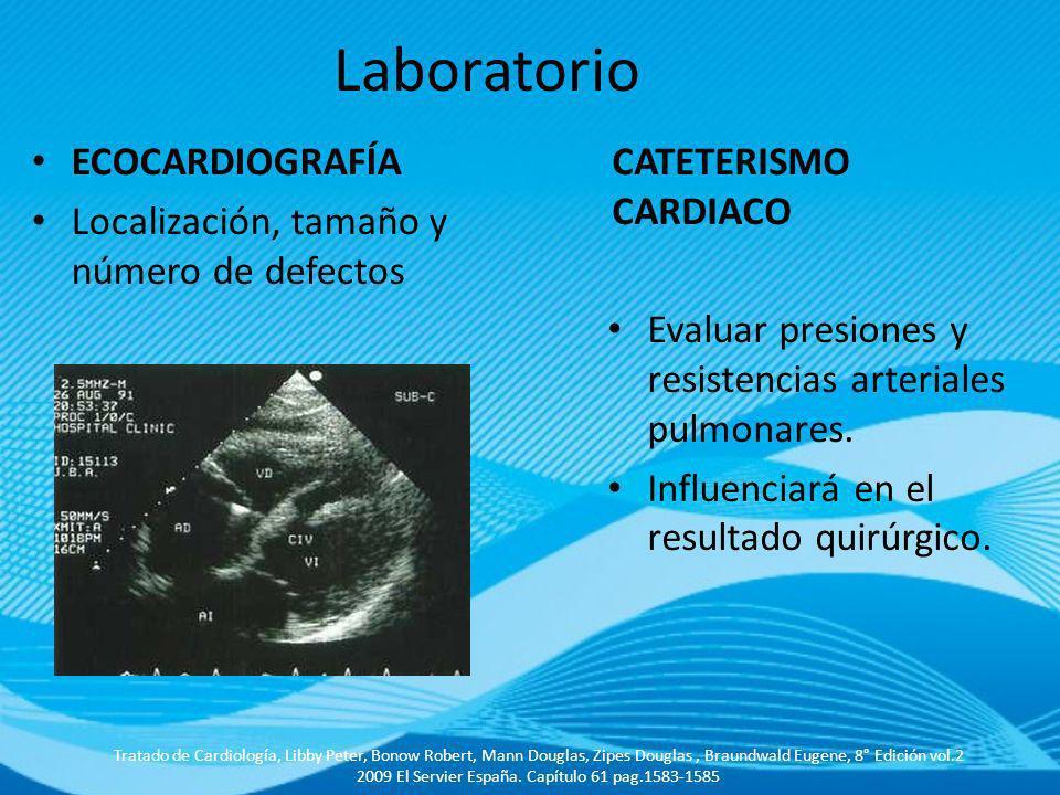 CATETERISMO CARDIACO Evaluar presiones y resistencias arteriales pulmonares. Influenciará en el resultado quirúrgico. ECOCARDIOGRAFÍA Localización, ta