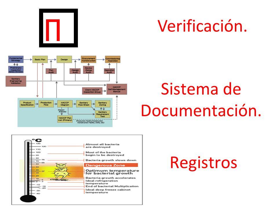 Verificación. Sistema de Documentación. Registros