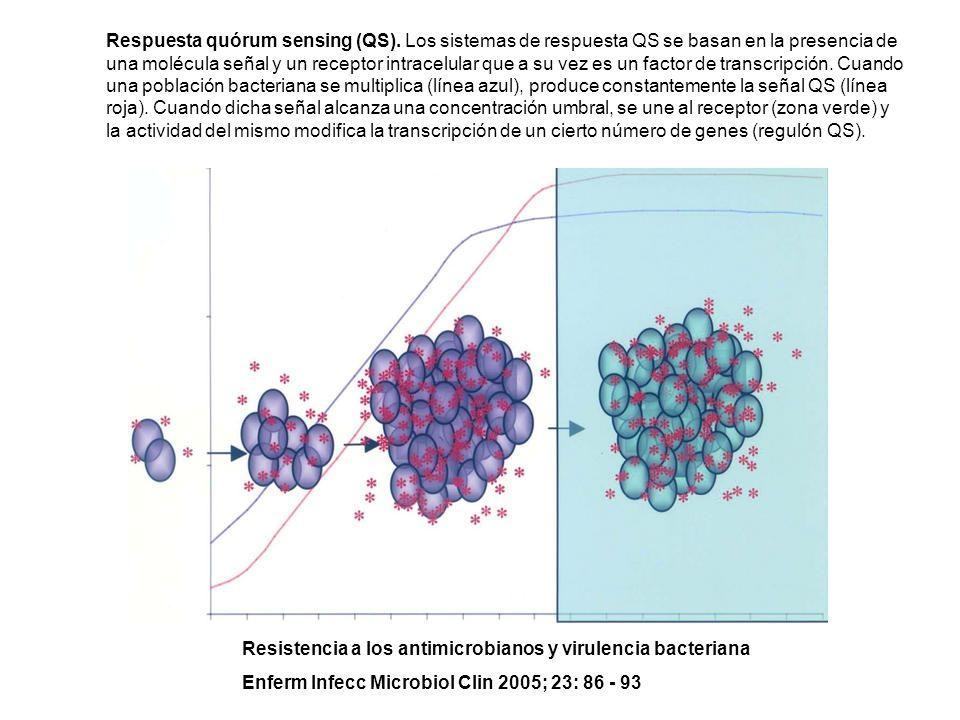 Respuesta quórum sensing (QS). Los sistemas de respuesta QS se basan en la presencia de una molécula señal y un receptor intracelular que a su vez es