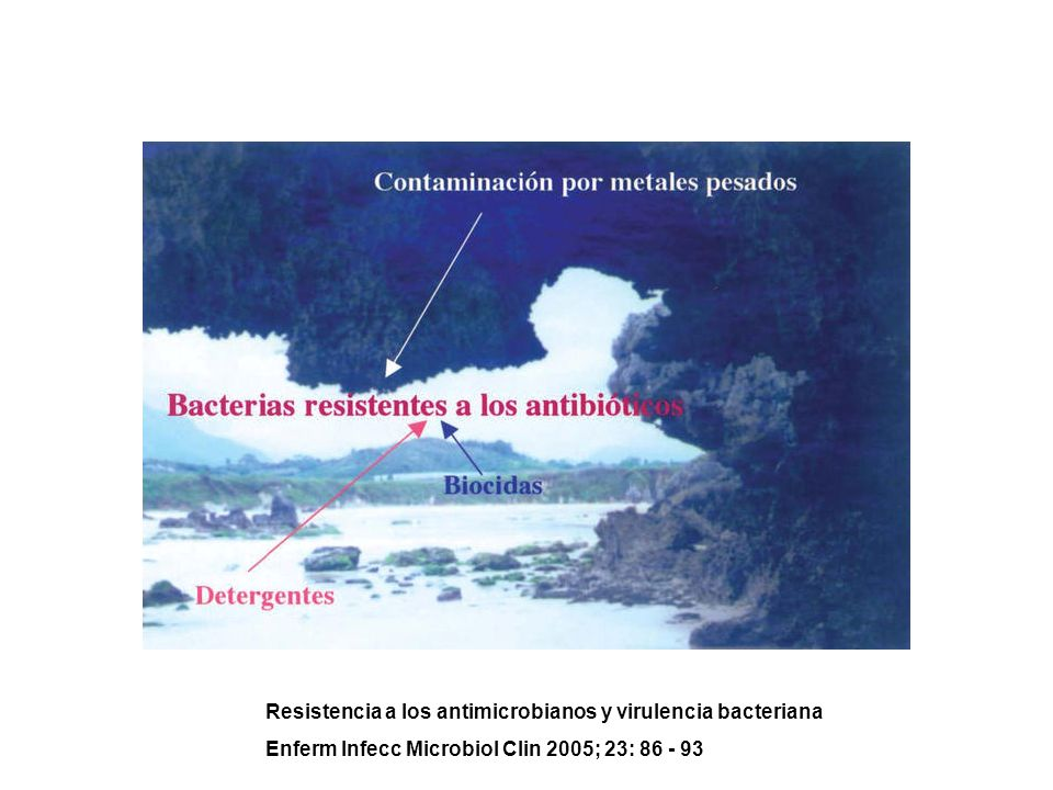 Resistencia a los antimicrobianos y virulencia bacteriana Enferm Infecc Microbiol Clin 2005; 23: 86 - 93