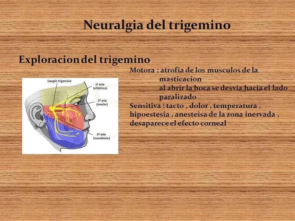 Exploracion del trigemino Motora : atrofia de los musculos de la masticacion al abrir la boca se desvia hacia el lado paralizado Sensitiva : tacto, dolor, temperatura, hipoestesia, anesteisa de la zona inervada, desaparece el efecto corneal Neuralgia del trigemino