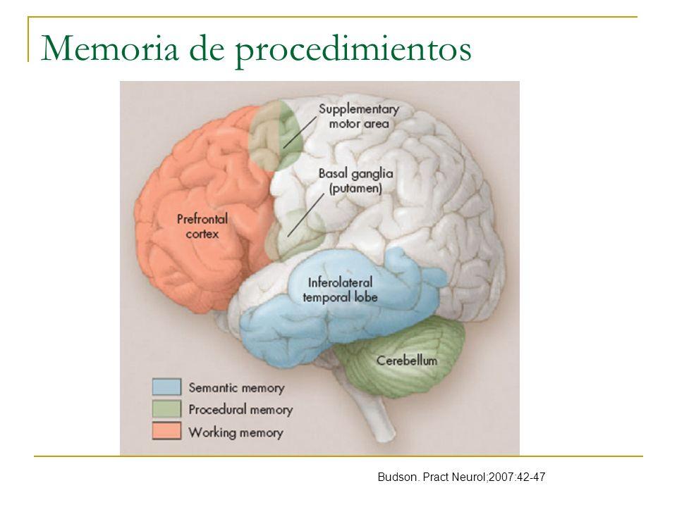 Memoria de procedimientos Budson. Pract Neurol;2007:42-47