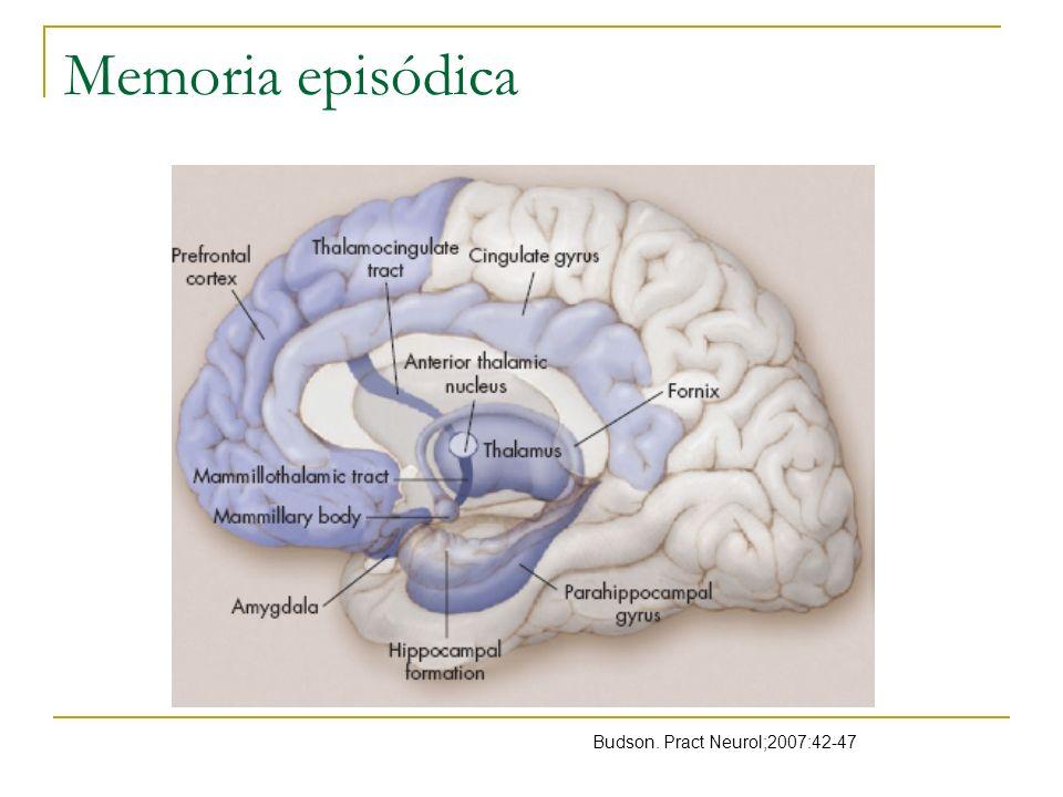 Evaluación de funciones cognitivas Importante por Evidenciar el déficit Memoria episódica, semántica La mayoría pueden ser diagnosticadas por el patrón que siguen Identificarlos en etapas prodrómicas Waldemar.