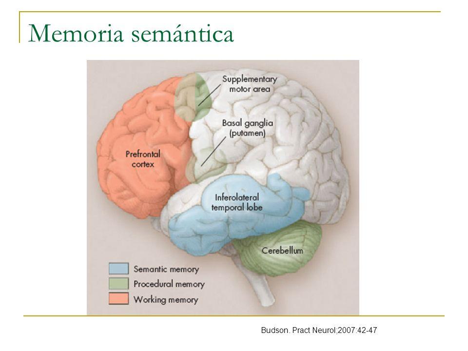 Evaluación cognitiva Función cognitiva global MMSE Nl> 26 ( escolaridad mayor a 6 años) >23 en analfabetas <17 daño grave CDR ( clinical dementia rating) Sensiblidad 96% Especificidad 94% Waldemar.