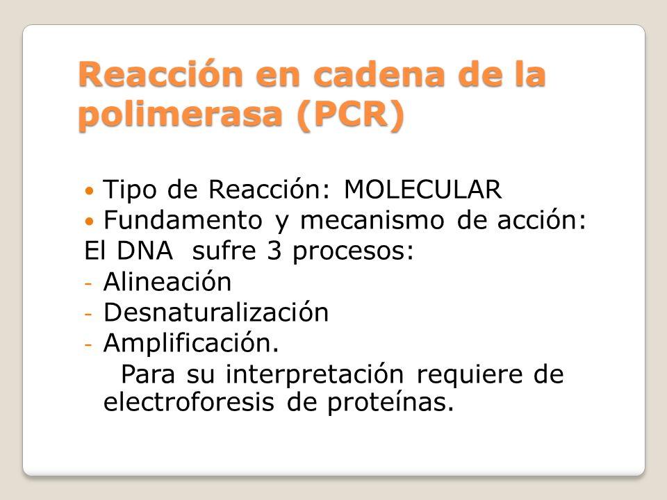 Reacción en cadena de la polimerasa (PCR) Tipo de Reacción: MOLECULAR Fundamento y mecanismo de acción: El DNA sufre 3 procesos: - Alineación - Desnat