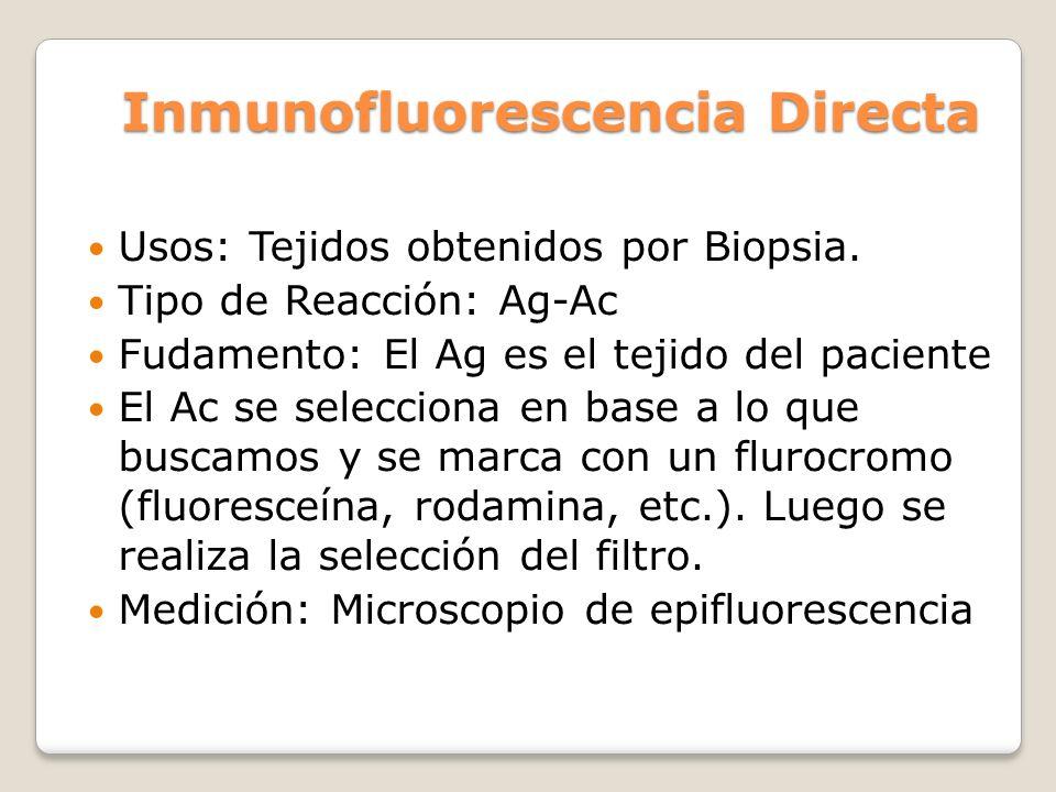 Inmunofluorescencia Directa Usos: Tejidos obtenidos por Biopsia. Tipo de Reacción: Ag-Ac Fudamento: El Ag es el tejido del paciente El Ac se seleccion