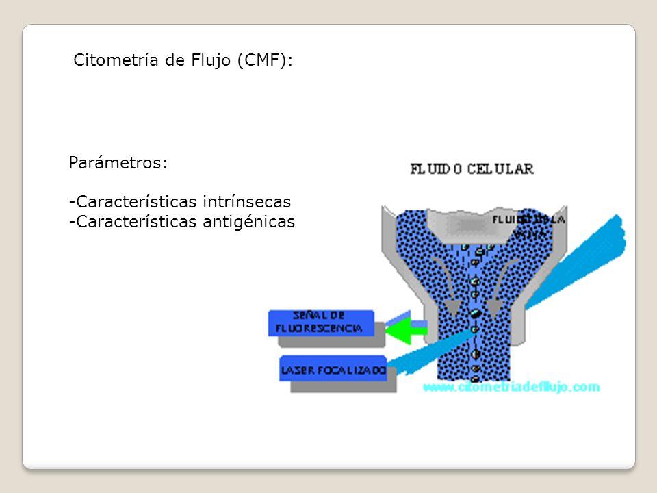 Citometría de Flujo (CMF): Parámetros: -Características intrínsecas -Características antigénicas