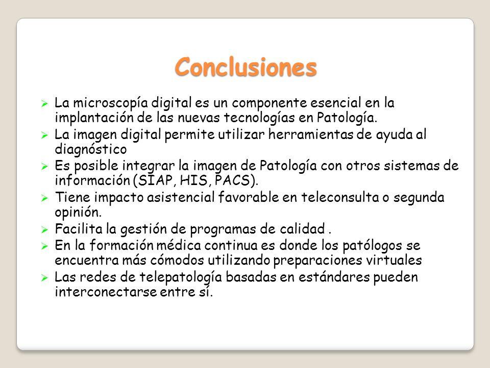 Conclusiones La microscopía digital es un componente esencial en la implantación de las nuevas tecnologías en Patología. La imagen digital permite uti