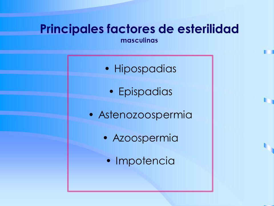 Principales factores de esterilidad masculinas Hipospadias Epispadias Astenozoospermia Azoospermia Impotencia